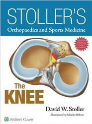 Cover Stoller's Orthopaedics and Sports Medicine: The Knee