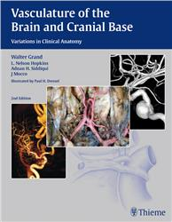 Cover Vasculature of the Brain and Cranial Base
