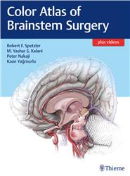 Cover Color Atlas of Brainstem Surgery