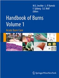 Cover Handbook of Burns - Volume 1