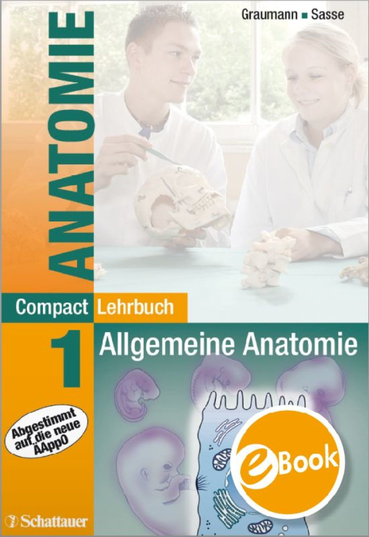 Compact Lehrbuch Anatomie 1