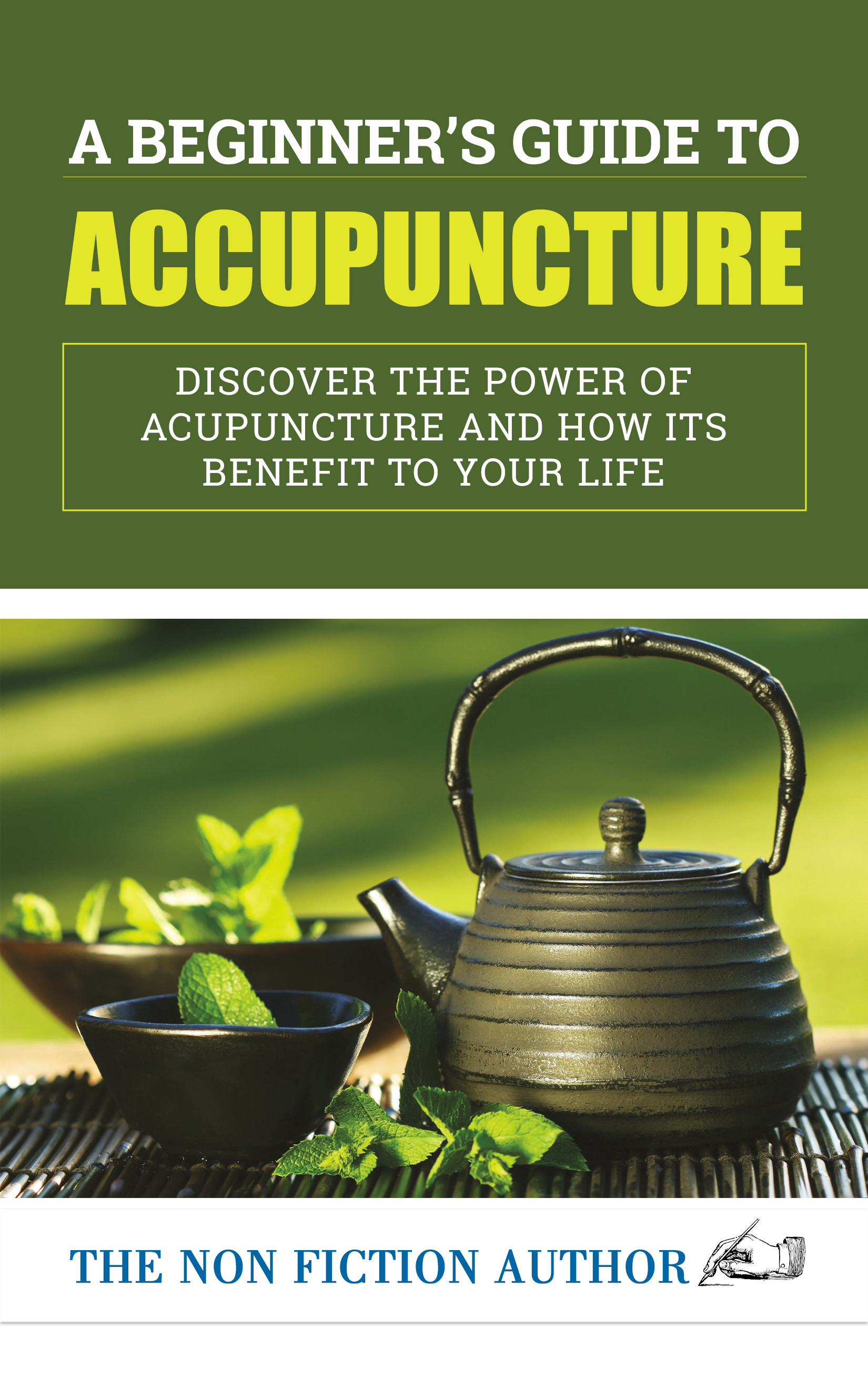 A Beginner's Guide to Acupuncture