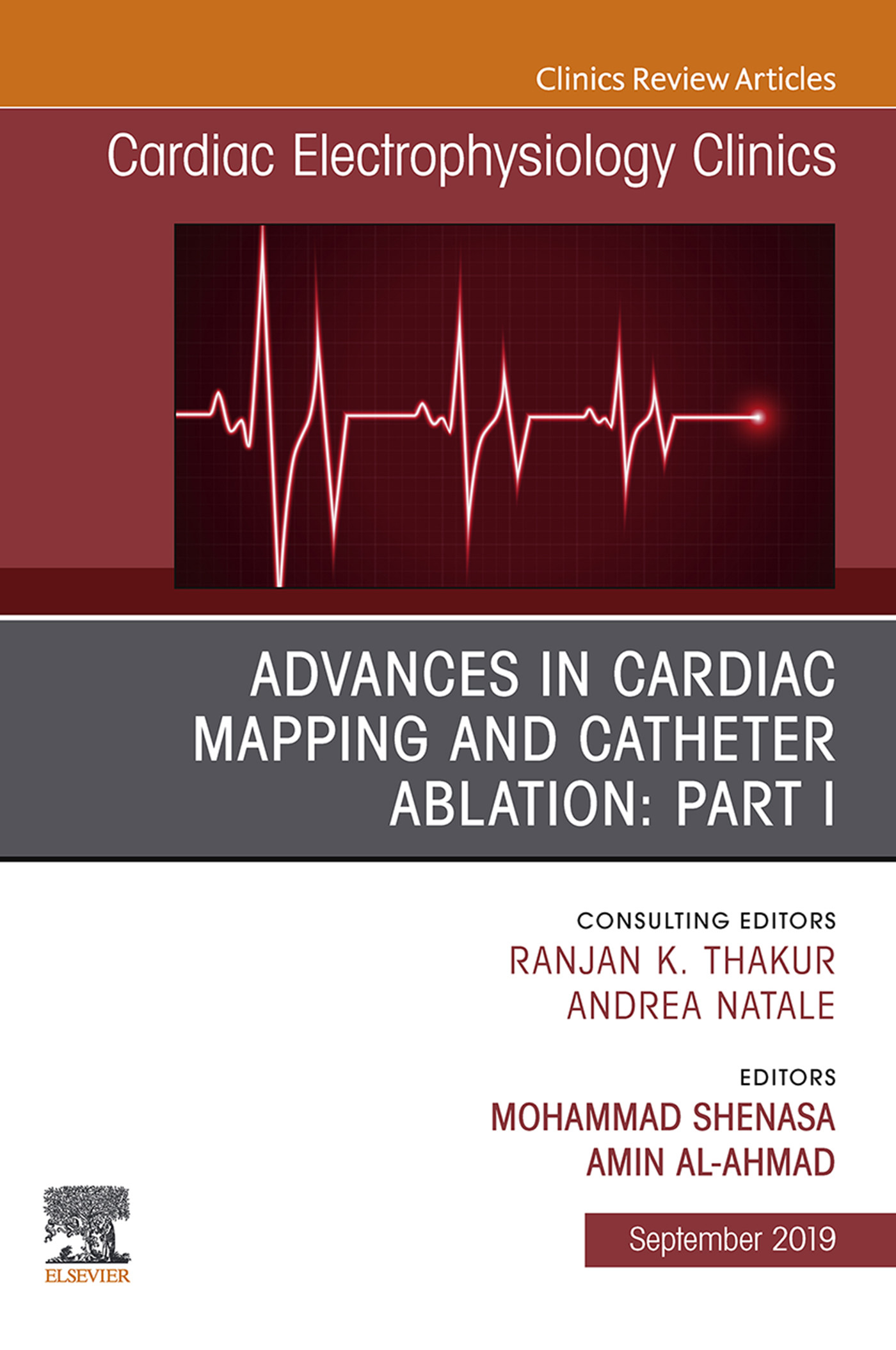 Advances in Cardiac Mapping and Catheter Ablation: Part I, An Issue of Cardiac Electrophysiology Clinics, Ebook