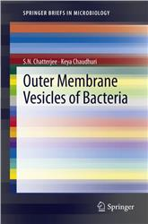 Cover Outer Membrane Vesicles of Bacteria