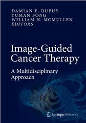 Cover Image-Guided Cancer Therapy: