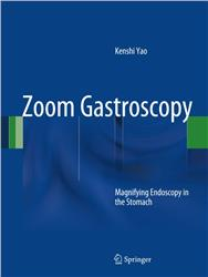 Cover Zoom Gastroscopy