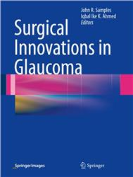 Cover Surgical Innovations in Glaucoma