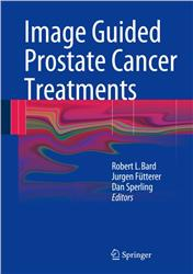 Cover Image Guided Prostate Cancer Treatments