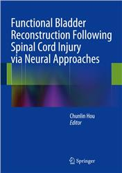 Cover Functional Bladder Reconstruction Following Spinal Cord Injury via Neural Approaches