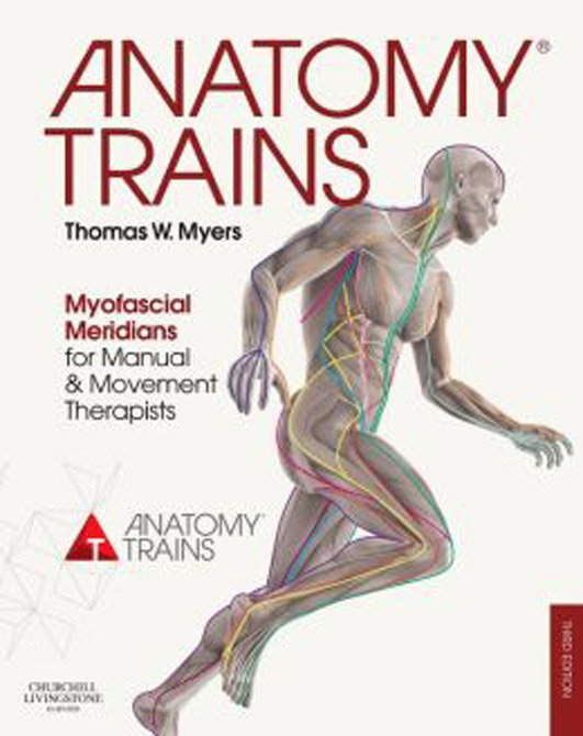 Anatomy Trains / with website access