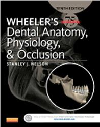 Cover Wheeler's Dental Anatomy, Physiology and Occlusion (incl. CD-ROM)
