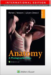 Cover Anatomy - International Edition