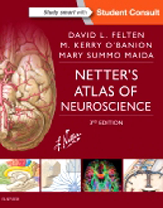 Netter's Atlas of Neuroscience