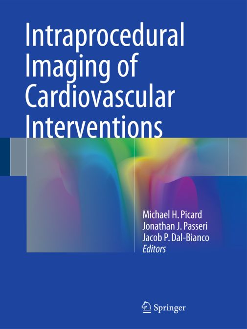 Intraprocedural Imaging of Cardiovascular Interventions