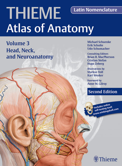 THIEME - Atlas of Anatomy