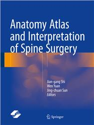 Cover Anatomy Atlas and Interpretation of Spine Surgery