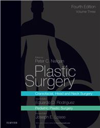 Cover Plastic Surgery Volume 3: Craniofacial, Head and Neck Surgery and Pediatric Plastic Surgery