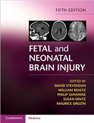 Cover Fetal and Neonatal Brain Injury