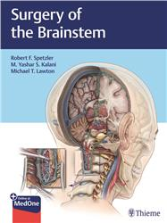 Cover Surgery of the Brainstem
