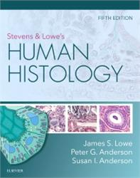 Cover Stevens & Lowes Human Histology