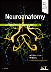 Cover Neuroanatomy: An Illustrated Colour Text