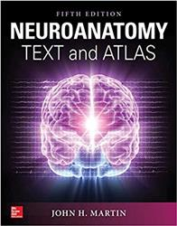 Cover Neuroanatomy