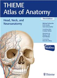 Cover Head, Neck, and Neuroanatomy (THIEME Atlas of Anatomy)